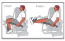 knee health 6